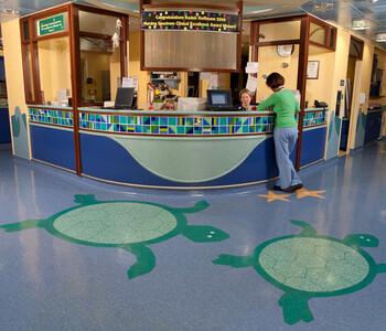 thumbnail: Edward Hospital Pediatric Emergency Room