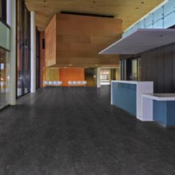 Restaurants Flooring Gerflor Usa